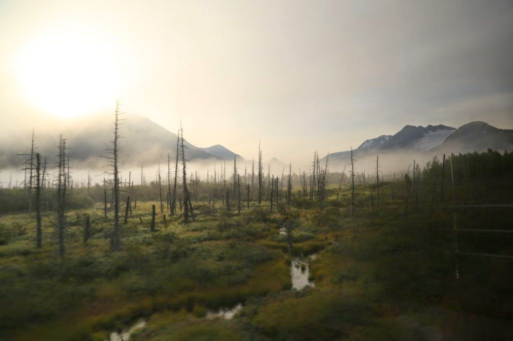 View from the window, Alaskan Railways train, Alaska