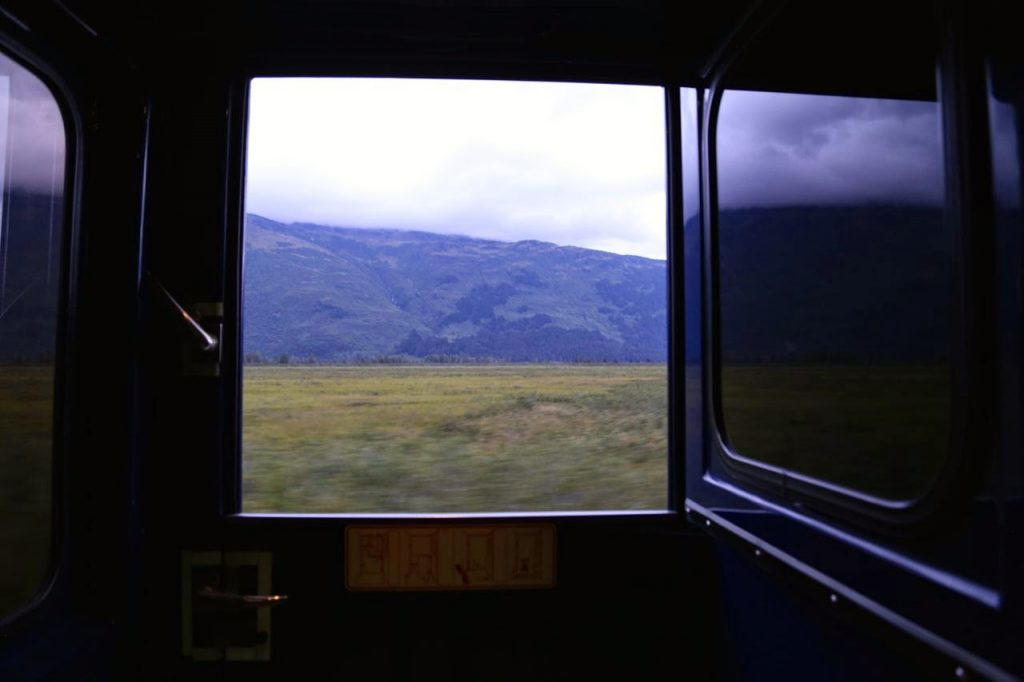 View from Alaskan railways train carriage