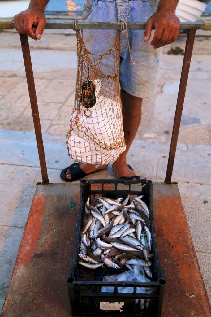 Sardines, Mondello, Sicily
