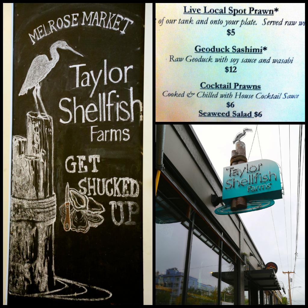 geoduck, Seattle, Taylor Shellfish Farms
