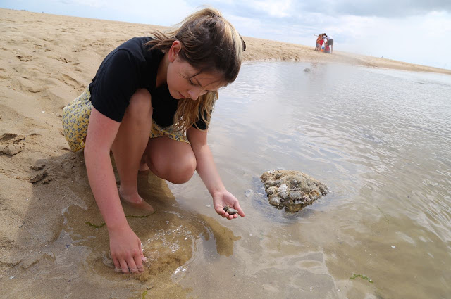 foraging for clams,  Ile de Ré, France, Pic: Kerstin Rodgers