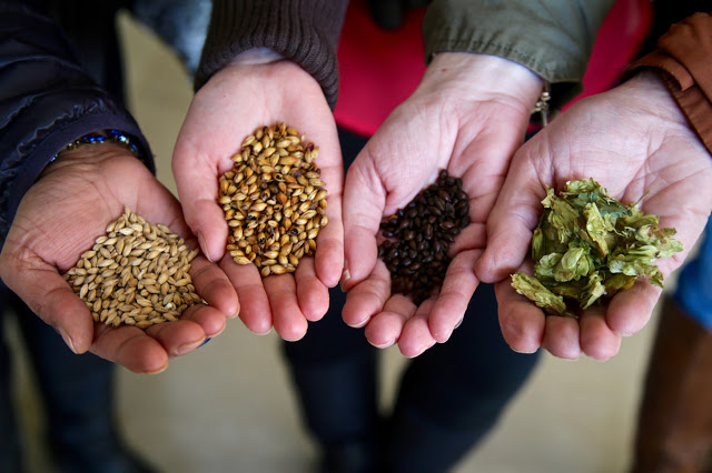 Left to Right: malted barley, crystal malt barley, roasted barley, hops. Ramsgate brewery, Kent