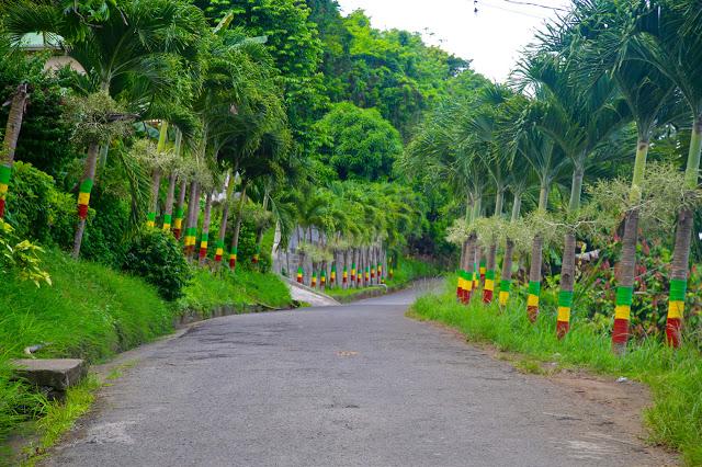 rasta colours in Grenada