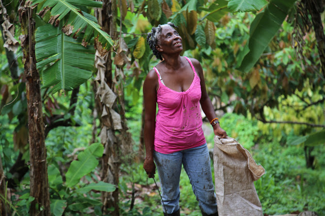 female cacao farmer, grenada