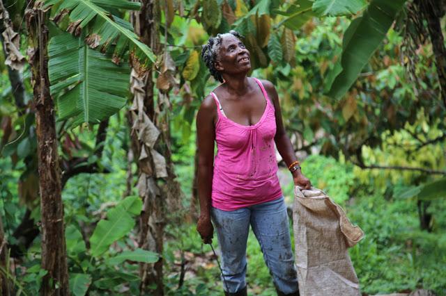 female cacao farmer, grenada