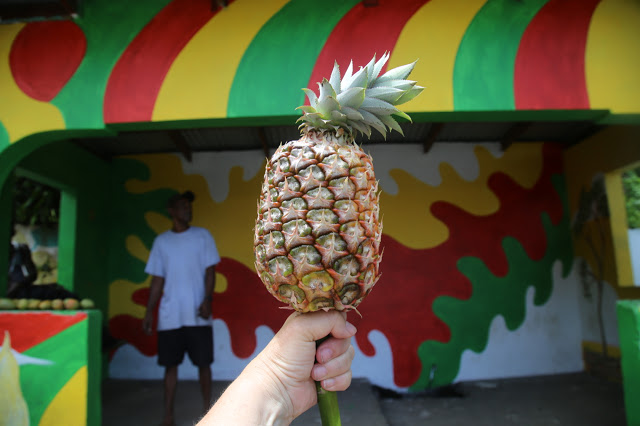 pineapple like a lollypop, grenada