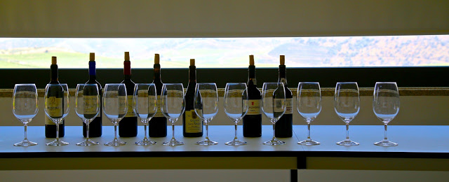 douro wine tasting, Portugal