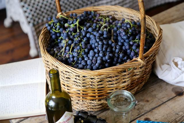 secret garden club grapes