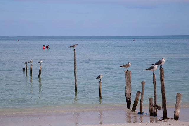 holbox,yucatan, mexico