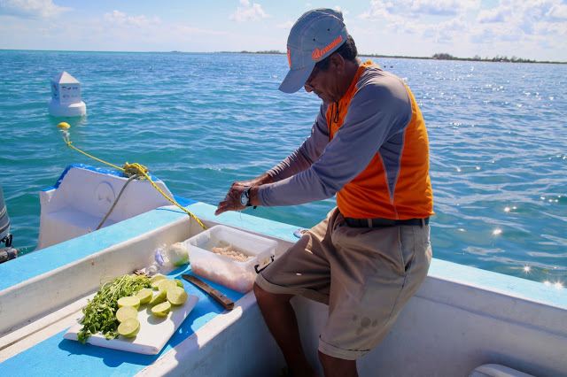 ceviche on a boat,  holbox,yucatan, mexico
