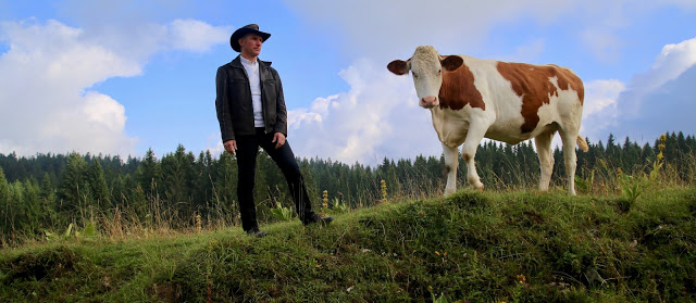 Tas the cowboy and dairy farmer with Montbeliarde cow, comté, Franche-comté