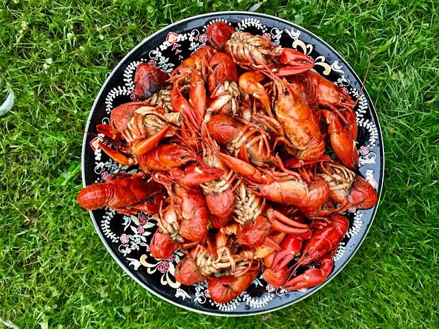 crayfish,  pure food camp, Skane, Sweden