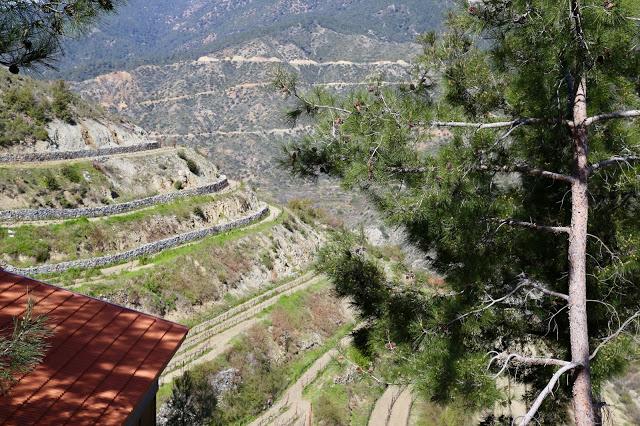 Tsiakkas winery, Cyprus pic: Kerstin Rodgers/msmarmitelover.com