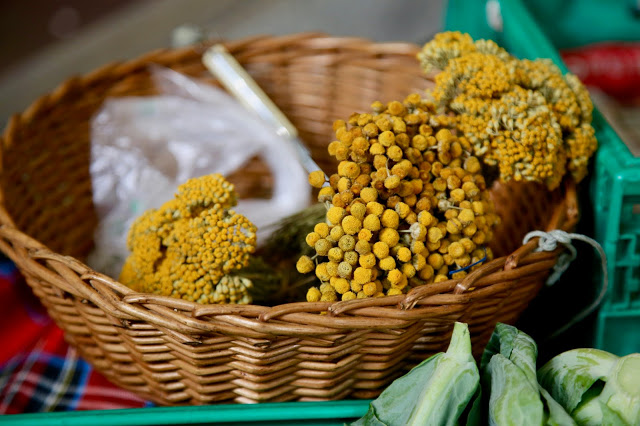 camomile,  Funchal, Madeira,  pic: Kerstin Rodgers/msmarmitelover