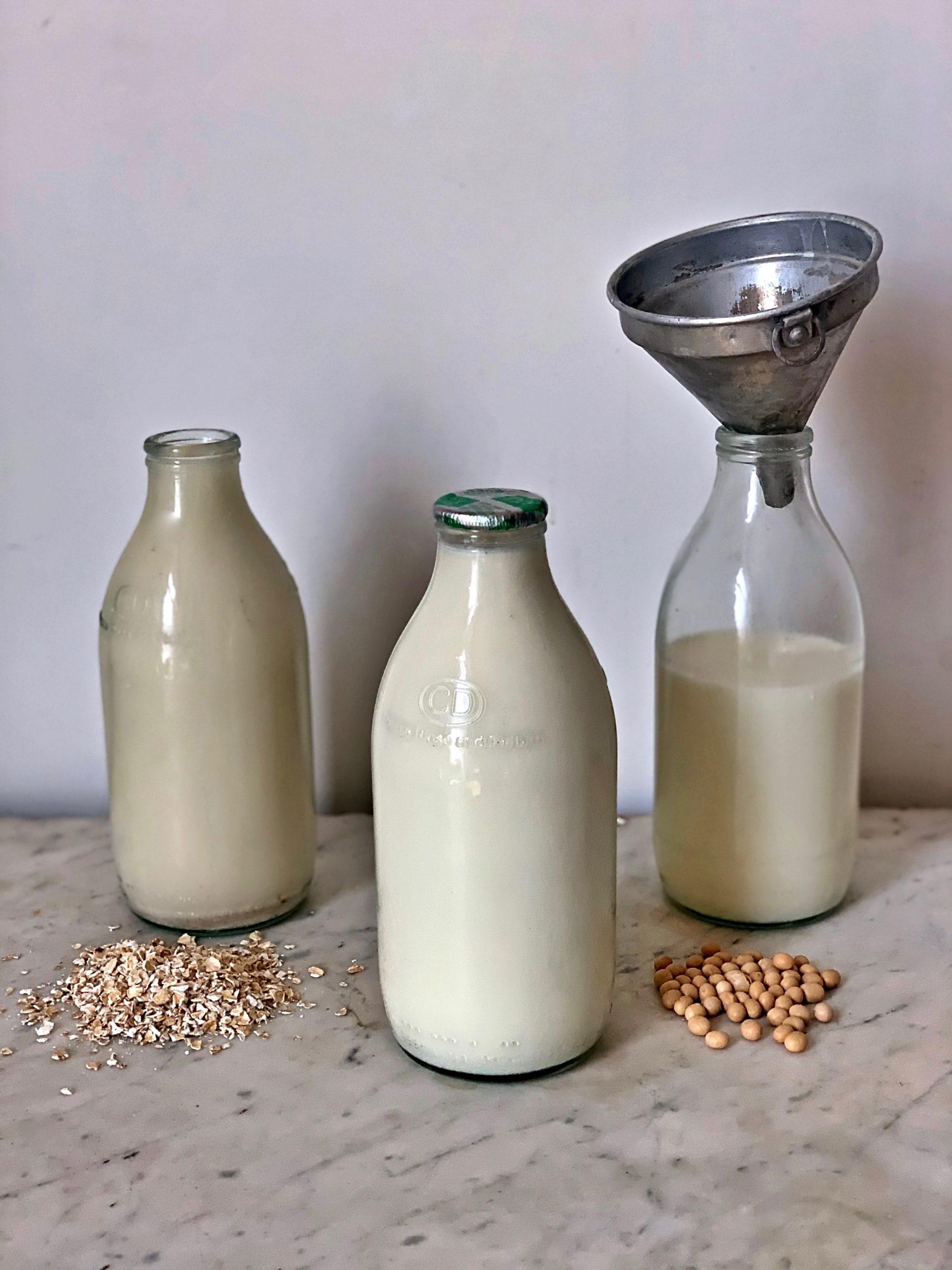 dairy milk, oat milk, soy milk pic: Kerstin rodgers/msmarmitelover.com