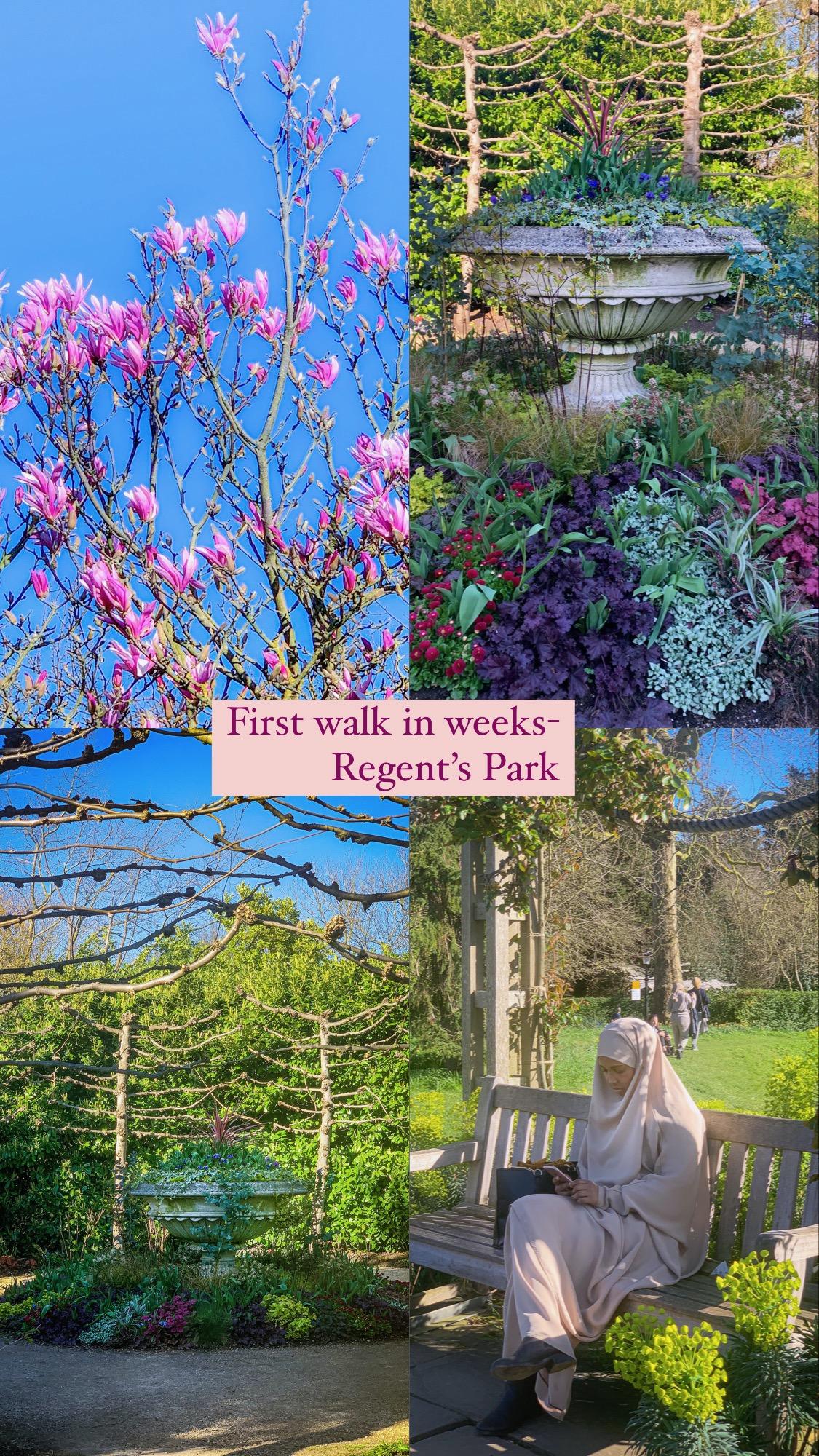Regents park walk pic:Kerstin Rodgers