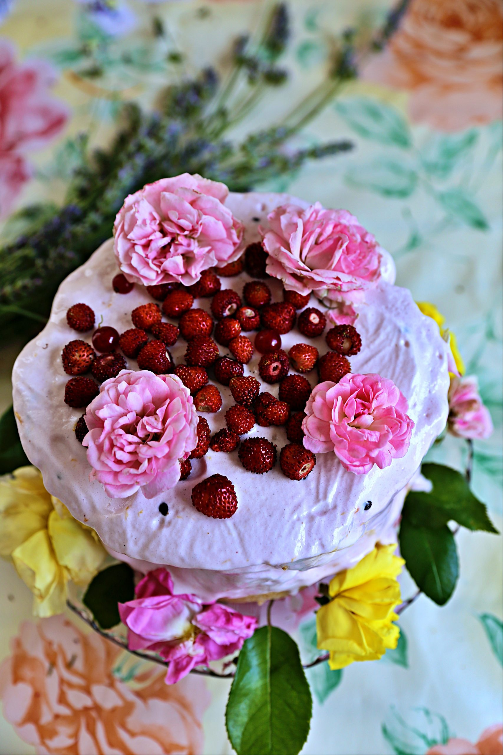 strawberry and rose cake pic: Kerstin rodgers/msmarmitelover.com